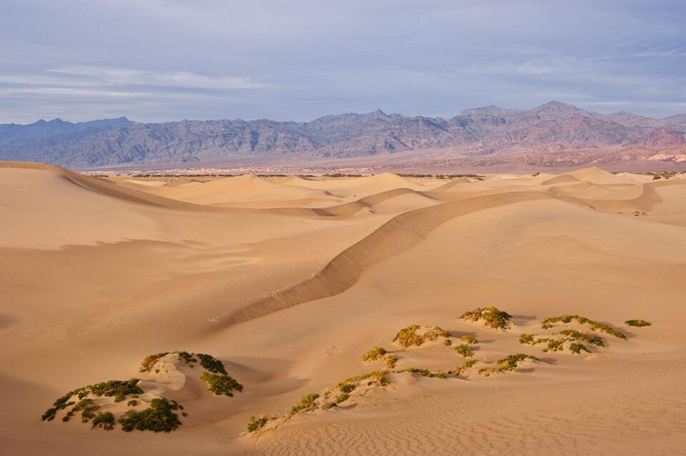 Sand Dunes #5