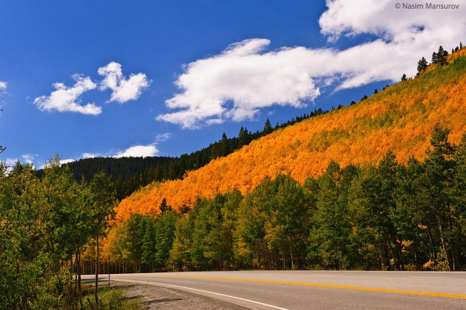 Fall in Colorado #1