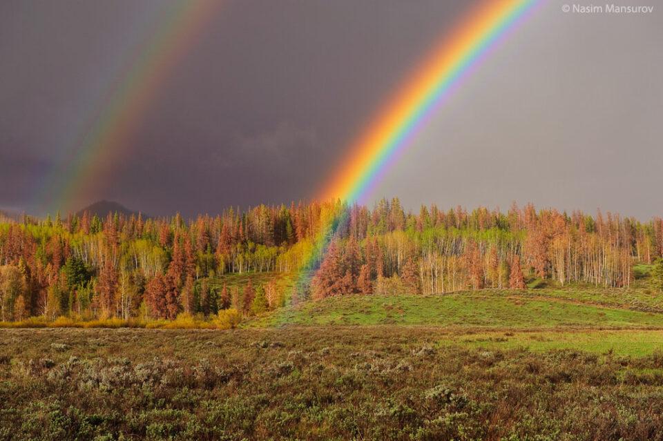 Full Rainbow Colors