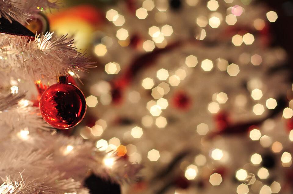 Corporate Photography - Christmas Tree