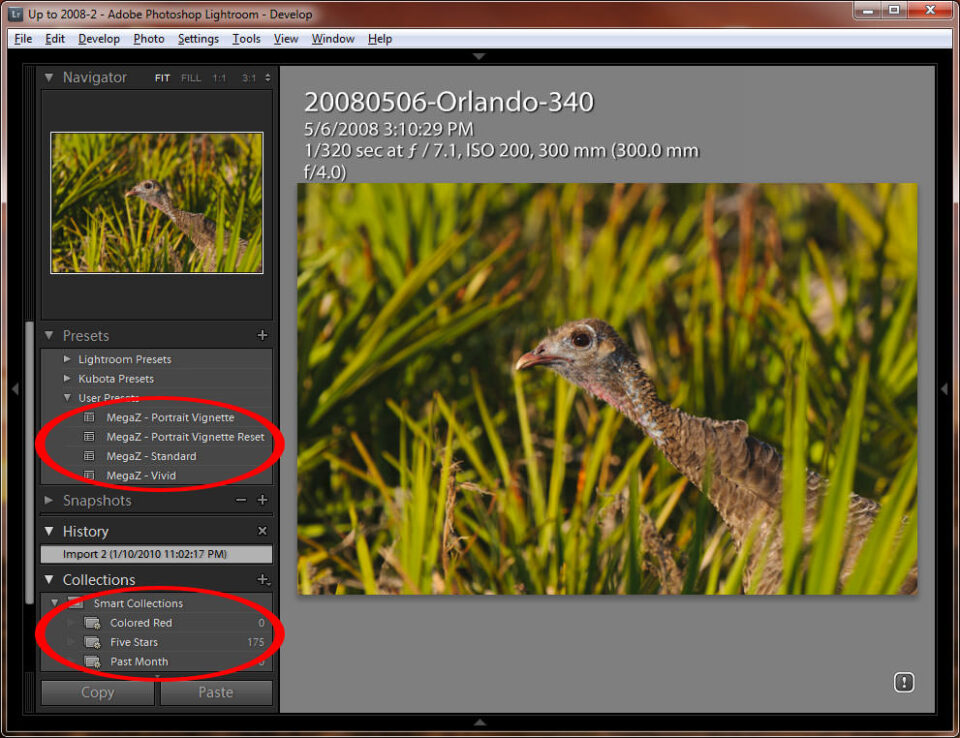 Lightroom Presets and Collections