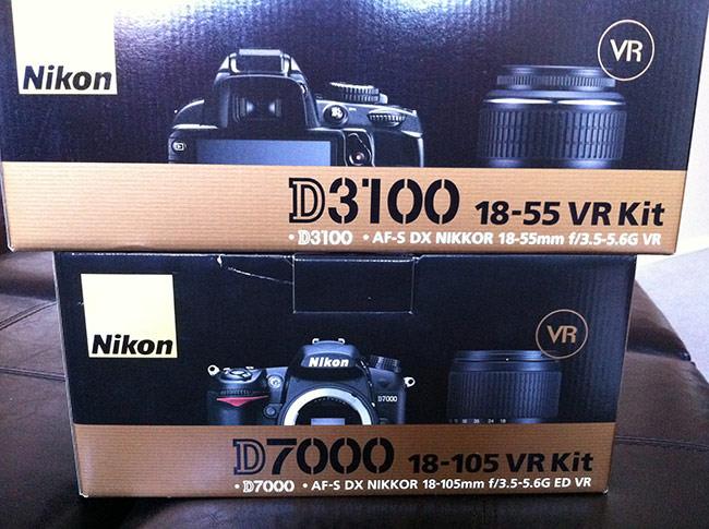 Nikon D7000 and D3100
