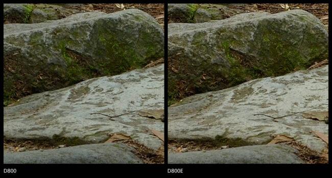 Nikon D800 vs D800E Sharpness