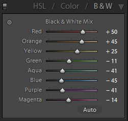 B&W HSL Panel B&W Adjustment