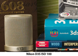 Nikon D3s ISO 100