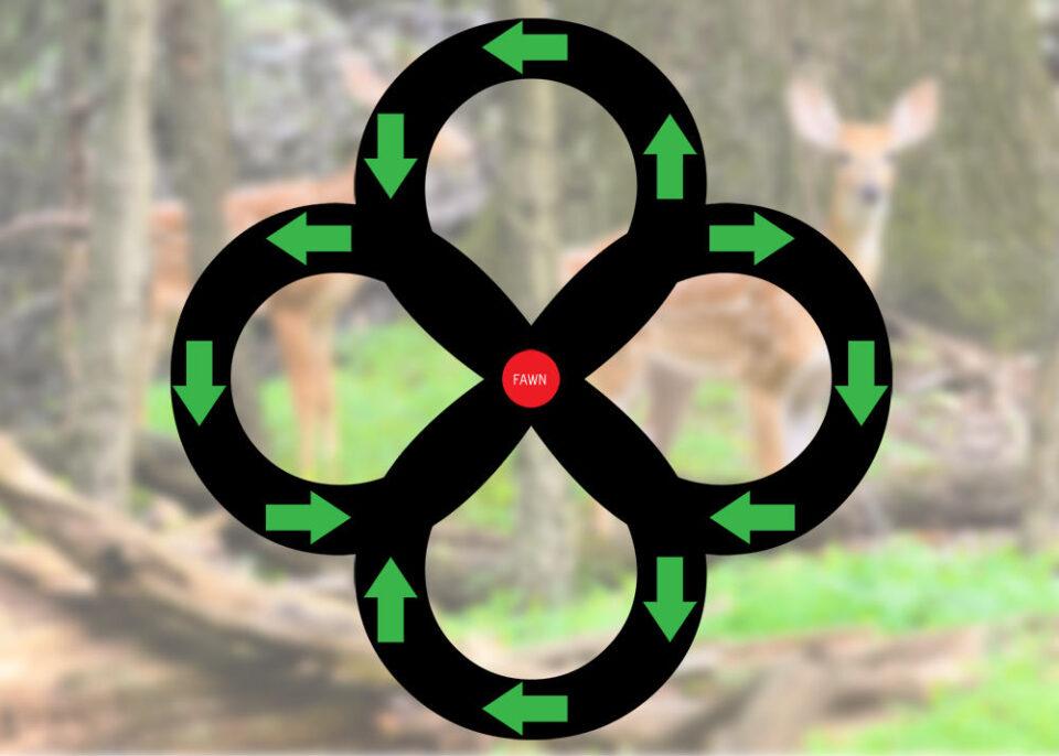 Fawn Escape Pattern
