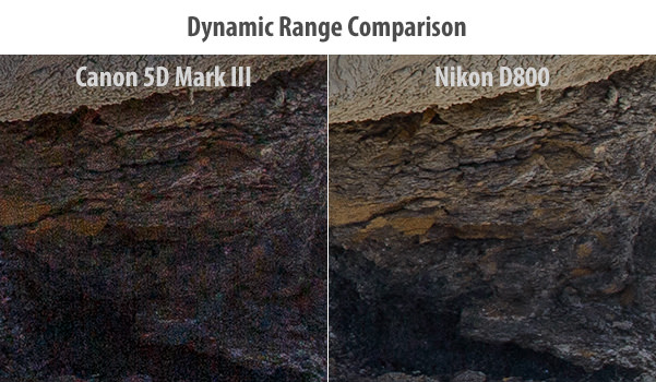 IMAGE: http://photographylife.com/wp-content/uploads/2012/06/Canon-5D-Mark-III-vs-Nikon-D800-Dynamic-Range-Comparison.jpg
