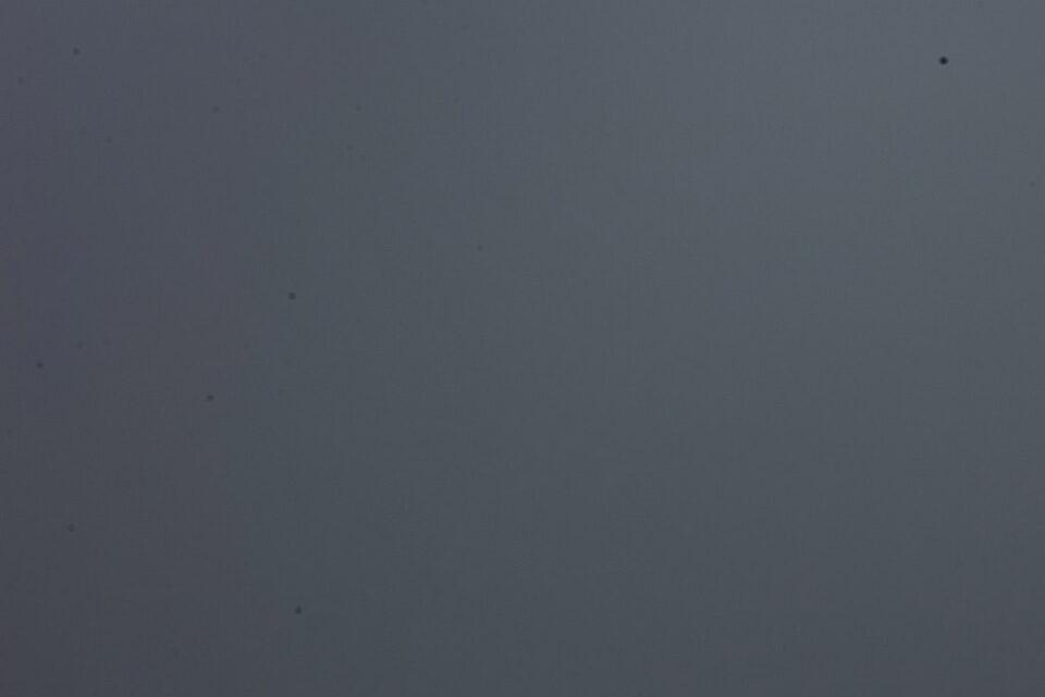 Nikon D600 Sensor Dust