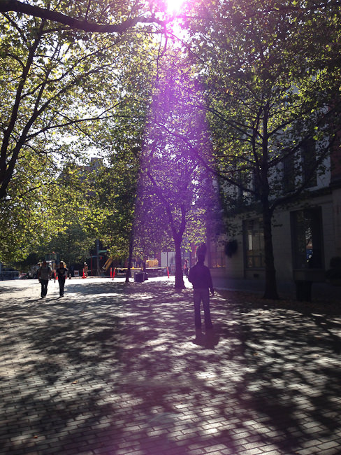 iPhone 5 camera review-2