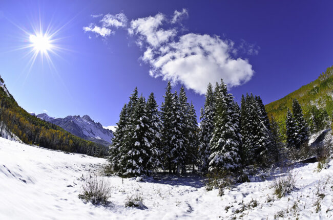 Snowy Landscapes (6)