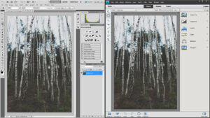 Photoshop vs Photoshop Elements
