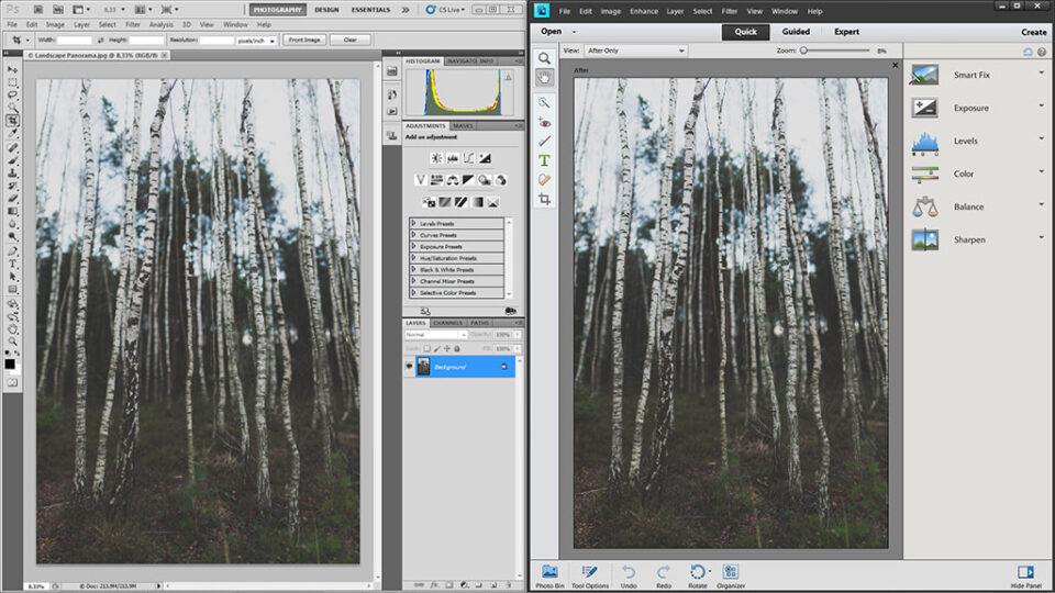 Adobe Photoshop or Photoshop Elements?