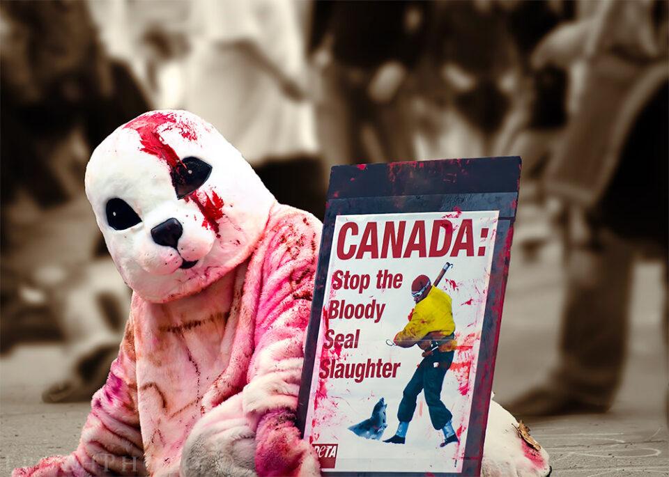 G20 Canada Seals