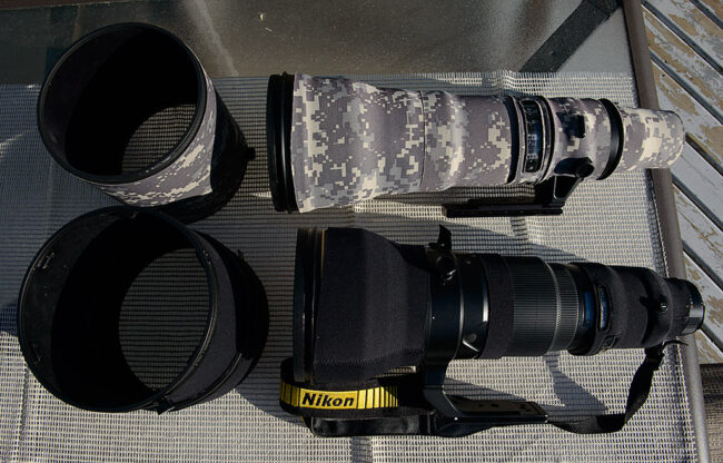 Nikon 800mm vs 600mm Comparison