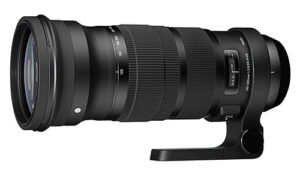 Sigma 120-300mm f/2.8 DG OS HSM Review
