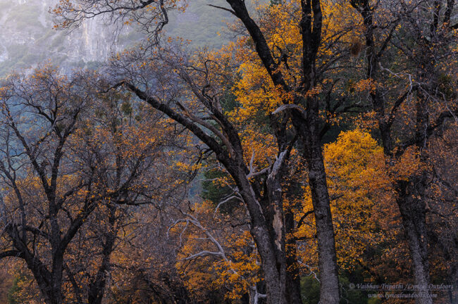 Yosemite in Autumn (2)