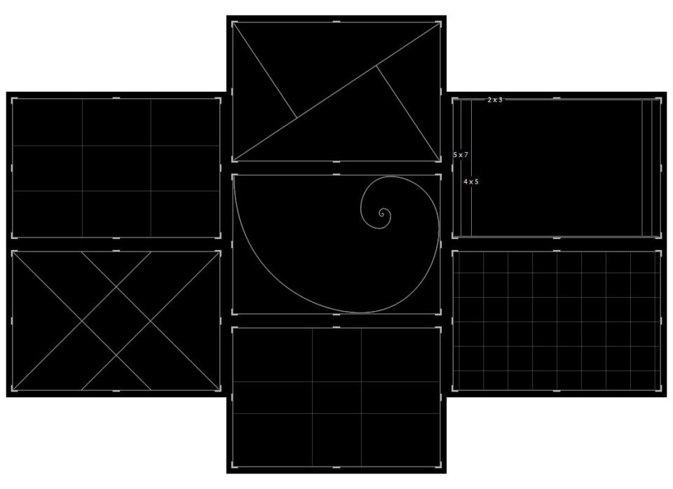 Lightroom Crop Grid Overlay