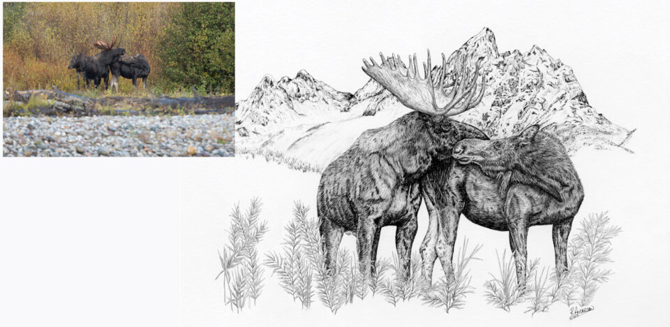 Kissing Moose Artwork from Photo