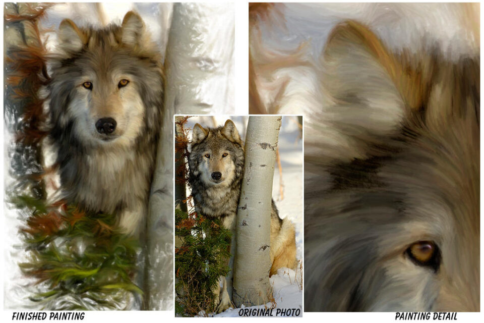 Wolf Art Created from a photo