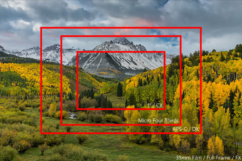 What is Crop Factor? Here is What You Need to Know