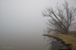 Using Fog to Create Surreal River Images