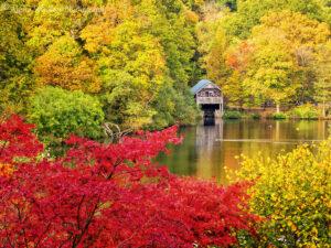 Autumn Encouragement