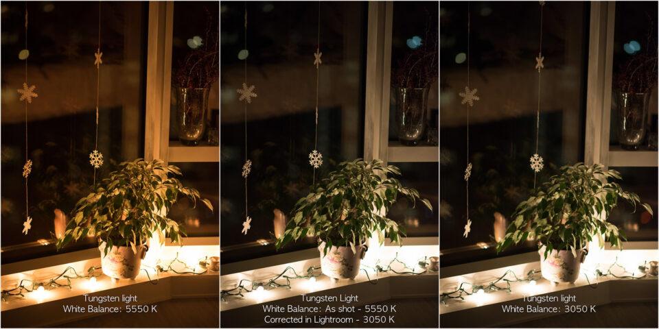 White Balance Adjusted in Lightroom
