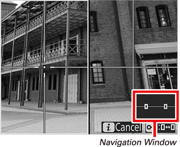 Nikon Split-Screen Display Zoom
