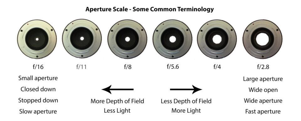 ¿Qué es la profundidad de campo? en fotografía: Terminología de apertura