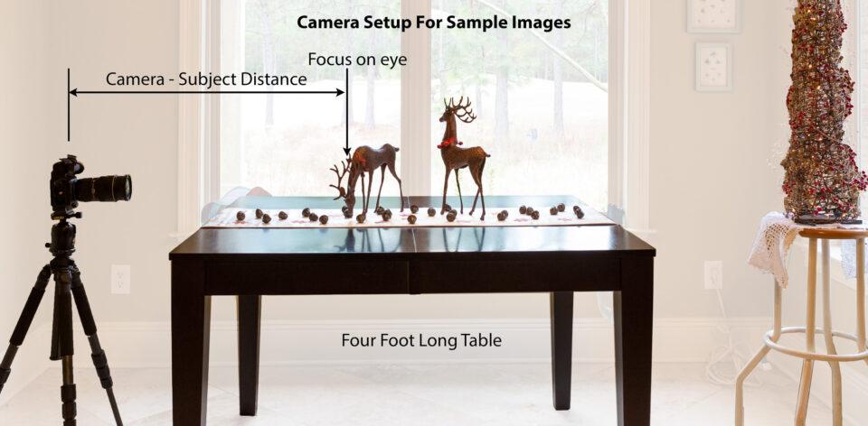 ¿Qué es la profundidad de campo? en fotografía:  Preparar