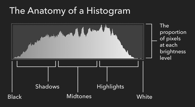 Camera Histogram. Measuring Exposure