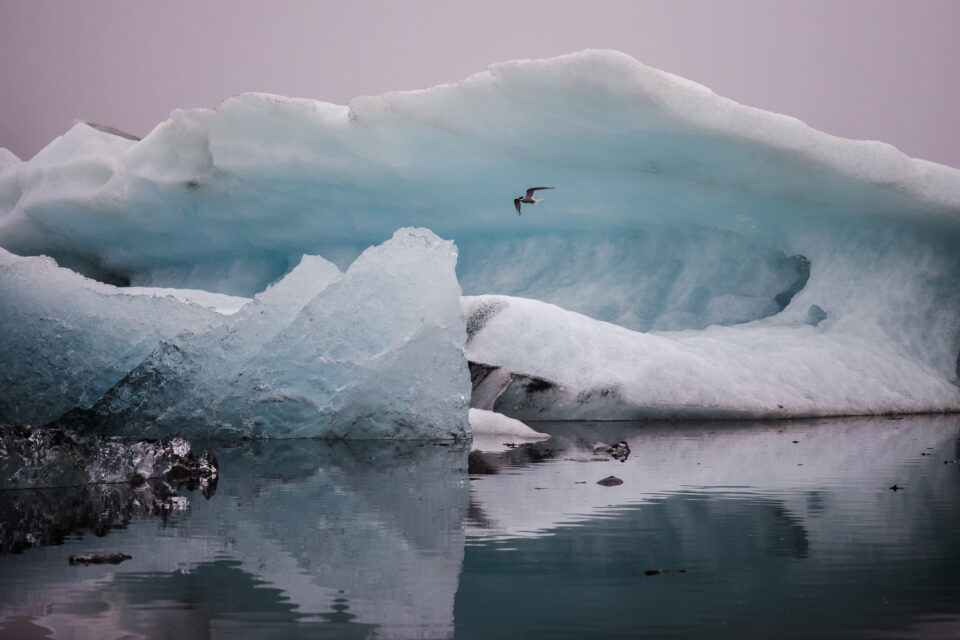 ISO Invariance Iceberg