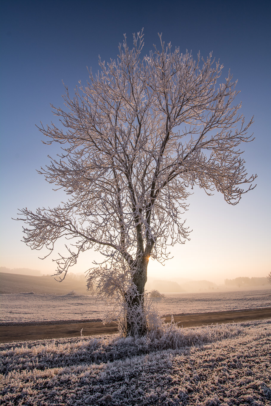 How To Photograph Winter Landscapes Take advantage of winter flight deals. how to photograph winter landscapes