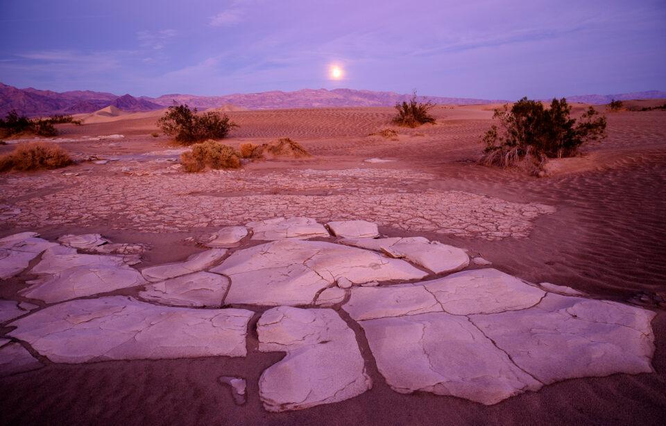 Moonrise Mesquite Dunes