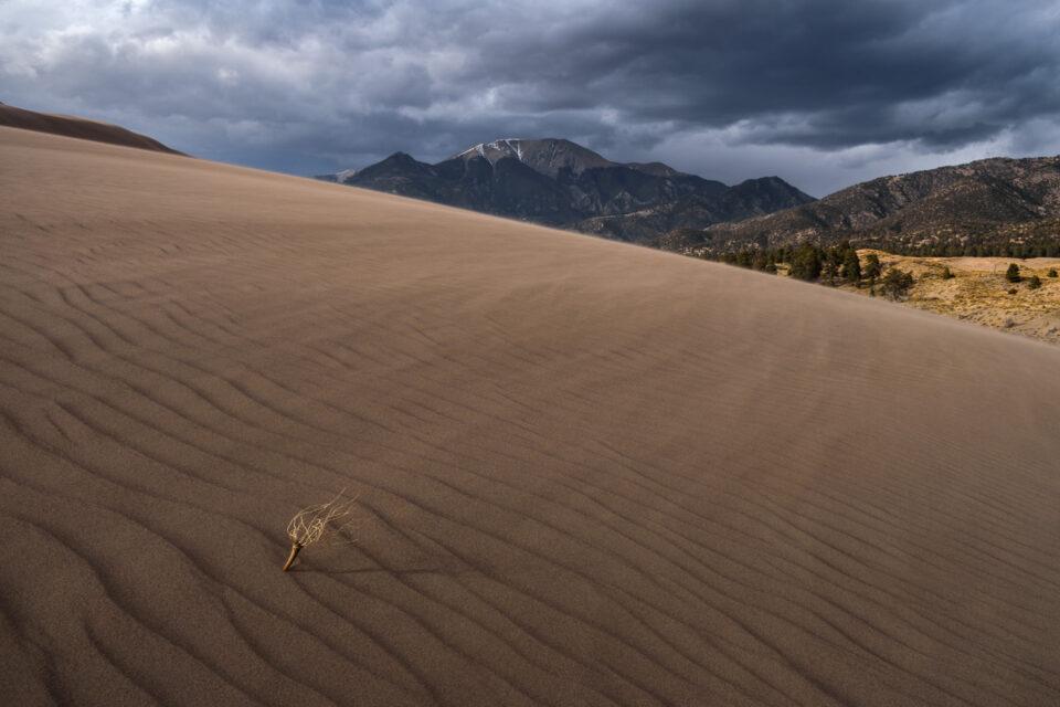 Sand Dune Landscape Photo