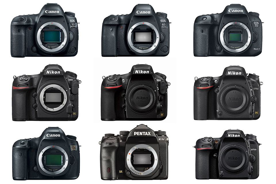 Best Dslr Cameras You Can Buy In 2020 Ranked