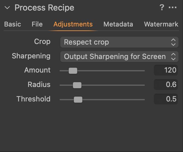 Capture One Process Recipe Adjustments Tab