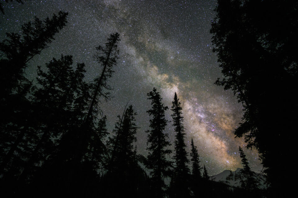 Pila de imágenes para estrellas puntiagudas con árboles difíciles en primer plano
