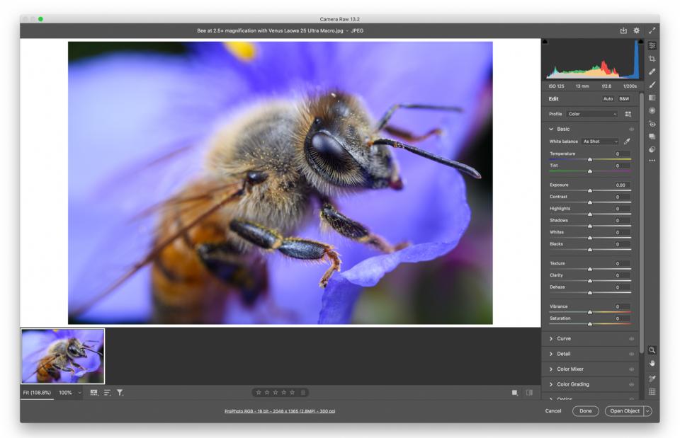 JPEG in Adobe Camera Raw