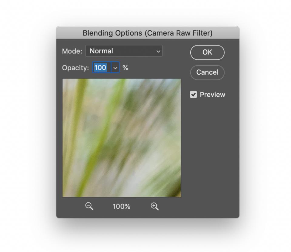 Blending Options for Photoshop Smart Filters