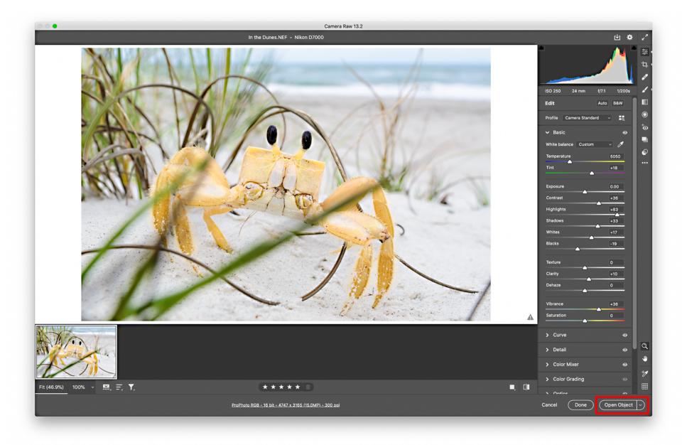 Open Smart Object from Adobe Camera Raw