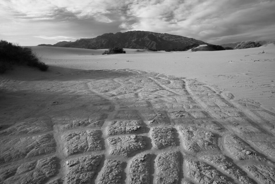 Death Valley Black And White Lines and Cracks